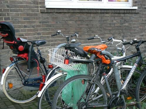 xe đạp, dĩ nhiên rồi vì đó là một phương tiện không làm ô nhiểm môi trường