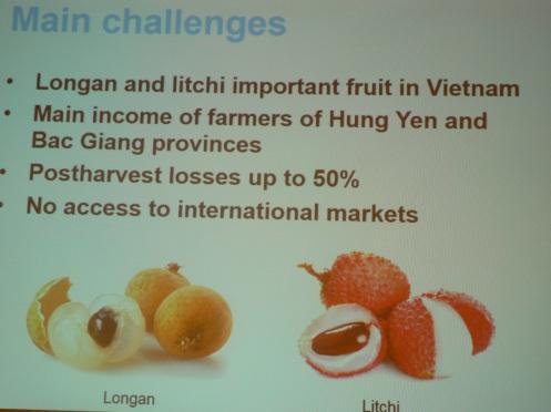 Minh họa của một chương trình hợp tác về nông nghiệp: chuyên viên Bỉ giúp chống hư thối cho trái cây sau vụ mùa