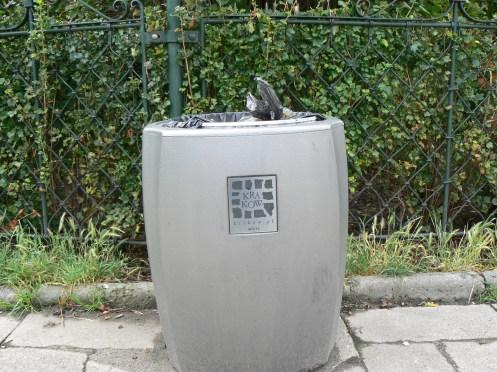Cũng ở Krakow, cúng một sọt rác đấy, nhưng một sọt rác đẹp