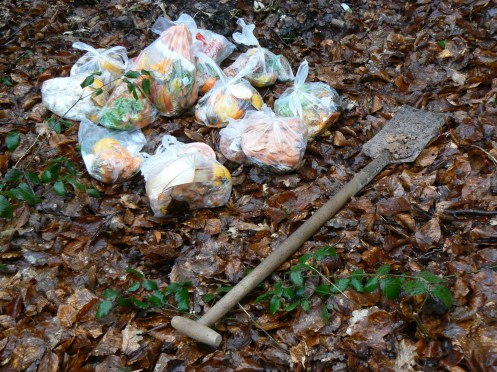 Những bao rác thực vật và cái xẻng để đào đất ...